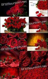 Stock Photos - Red Roses