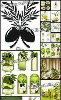 Stock Vector - Collections of Olive Elements 3