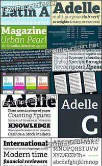 Adelle Font Family - 12 Fonts for $599