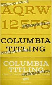 Columbia Titling Font Family - 4 Fonts for $24