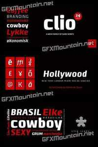 Clio Font Family - 24 Fonts for $389