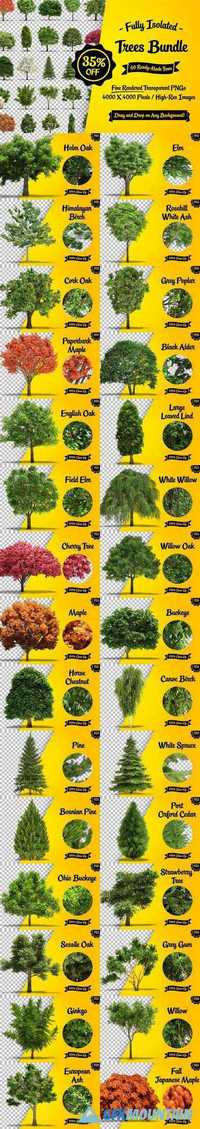 Fully Isolated Trees Bundle - 60 pcs 429739