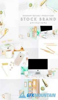 Mint + Gold Stock Photo Bundle 1494213