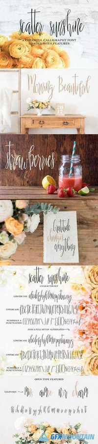 New Scatter Sunshine Typeface Fonts 1691430
