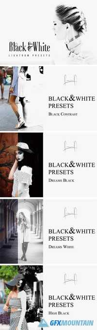Black & White Lightroom Presets 1884026