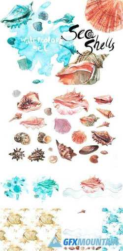 WATERCOLOR SET SEA SHELLS - 1961659