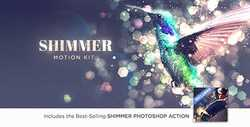 Shimmer Motion Kit - After Effects Scripts 21189094