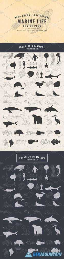 30 Hand Drawn Marine Life Vector Set 2316539