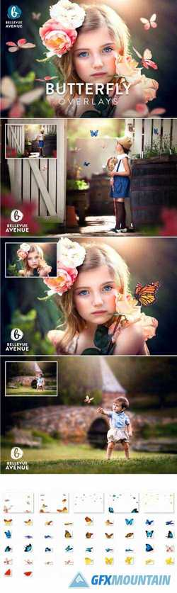 BUTTERFLY OVERLAYS (REAL) - 2294970