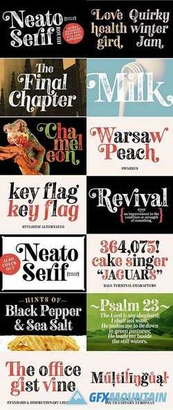 NEATO SERIF ROUGH FONTS 2357547