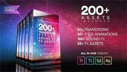 200+ Pack: Transitions, Titles, Sound FX  21474240
