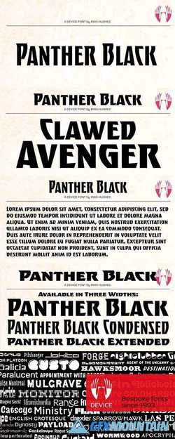 Panther Black Font Family