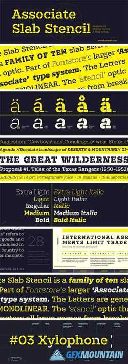 Associate Slab Stencil Font Family