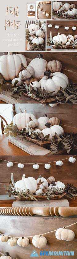 Fall Moody Stock Photo Bundle 2861630