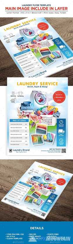 Laundry Services Flyer - Business Flyer 22541864