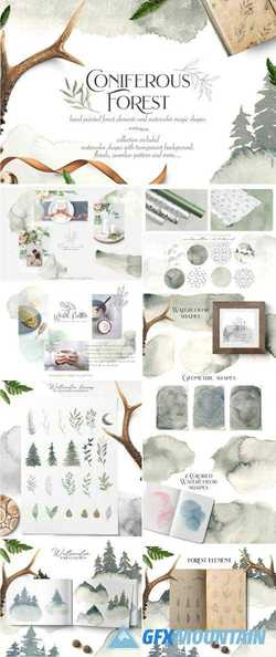 CONIFEROUS FOREST COLLECTION - 2706919