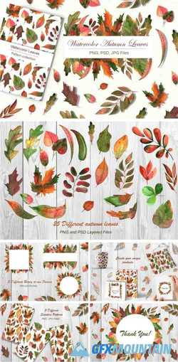 WATERCOLOR AUTUMN LEAVES - 3957168