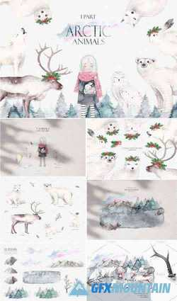 ARCTIC ANIMALS WATERCOLOR SET PART 1 - 3245371