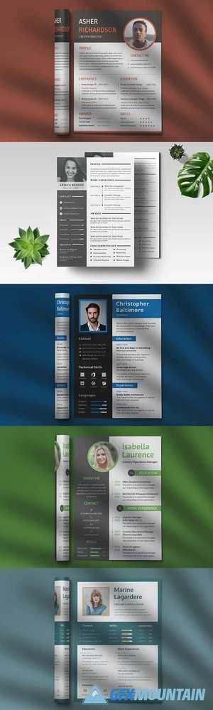 CV Resume Professional Template
