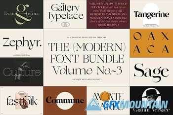 The Modern Font Bundle Vol.3 5548383